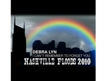 I Can't Remember To Forget You: Nashville Floods 2010